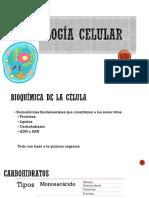 Introduccion a la biologia celular