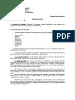Taller de Integracion_Trabajo final (2017-2) (1).docx