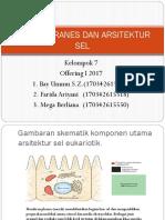Struktur Dan Fungsi Membran Sel by Kel. 7