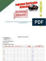 Programa de Grado 5º.doc