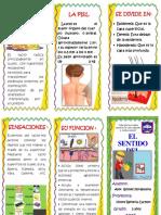 TRIPTICO DEL SENTIDO DEL TACTO.docx