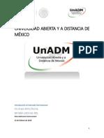 IMEI_U2_EA_IRWR.docx