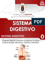 DIAPOSITIVAS SISTEMA DIGESTIVO 2 (1).pptx