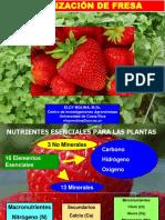FERTILIZACION DE FRESAS 2018.pdf