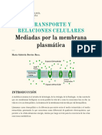 Transporte y Relaciones_Membrana.pdf