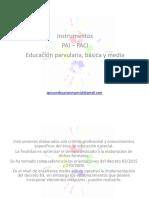 Instrumentos PAI PACI.pdf