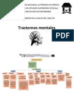 Trastornos-mentales.docx