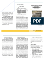 TRIPTICO SEPTICO .pdf