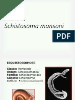 6.Schistosoma mansoni
