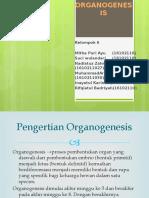 Organo Genesis