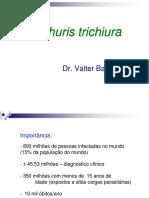 10.Trichuris trichiura