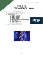 Tema 12- Genética Mendeliana