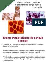 13. Exame de Sangue