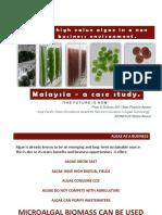 Algae in Malaysia - Case Study.pptx