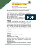 13. E.T. VISTA ALEGRE CORREGIDO.docx