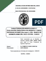 Caract_Morf_fenolog_Divers_Maiz_Cusco_UNSAAC_Te.pdf