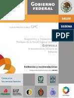 Cistocele_EVR_CENETEC_IUE_VERIF_MZO.pdf