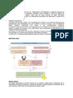 reporte 3. tiofeno.docx