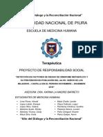 PROYECTO-TERAPÉUTICA-SOCIAL-FINAL....docx