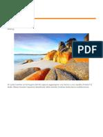 Documento (6.pdf