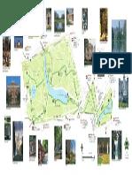 diana_memorial_walk_leaflet.pdf