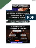TF_-_Montagem_e_periodizao_2015.pdf