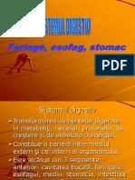 Digestiv III esof,stom (EMO 2009) .ppt