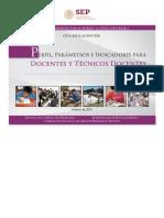 PPI.pdf