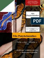Aula - PLATYHELMINTES e NEMATODA[915].pdf