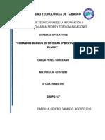 Pérez_Soberano_Carla_P3_P1.docx
