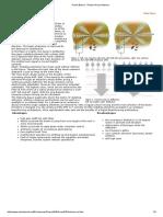 Radar Basics - Phased Array Antenna.pdf