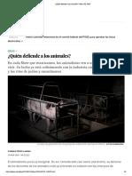 ¿Quién defiende a los animales_ _ Ideas _ EL PAÍS