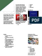FCC tríptico.docx