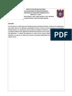 Práctica 2. GELES TECNO.docx
