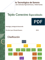 Tejido Conectivo Especializado-2019 Repaso