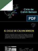 grupo 4 Ciclo de Calvin.pptx