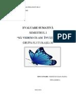 evaluare_sumativa_gr_mica_sem_1.docx