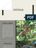 Cafeaua prezentare power point