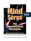 Mind Surge 