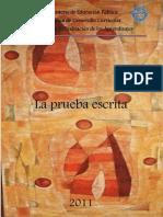 PRUEBA ESCRITA.docx