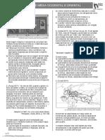 HISTORIA IDADE MEDIA ORIENTAL E OCIDENTAL.pdf