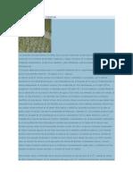 DESARROLLO DE LA ciencia.docx