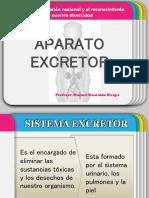 SISTEMA EXCRETOR 2.ppt