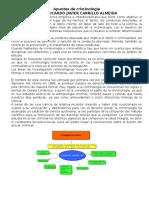 Apuntes de criminología.docx
