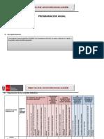 FORMATOS DE PLANIFICACION CURRICULAR (1) (1).docx