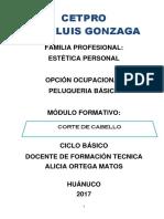 19 CORTE DE CABELLO 2017-1.docx
