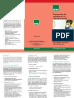 5. Riesgo de sobreesfuerzos - ACHS.pdf