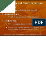 Fruit Types.pdf