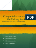 K25 - a - Congenital anomalies of the Urinary tract.pptx