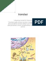 translasi